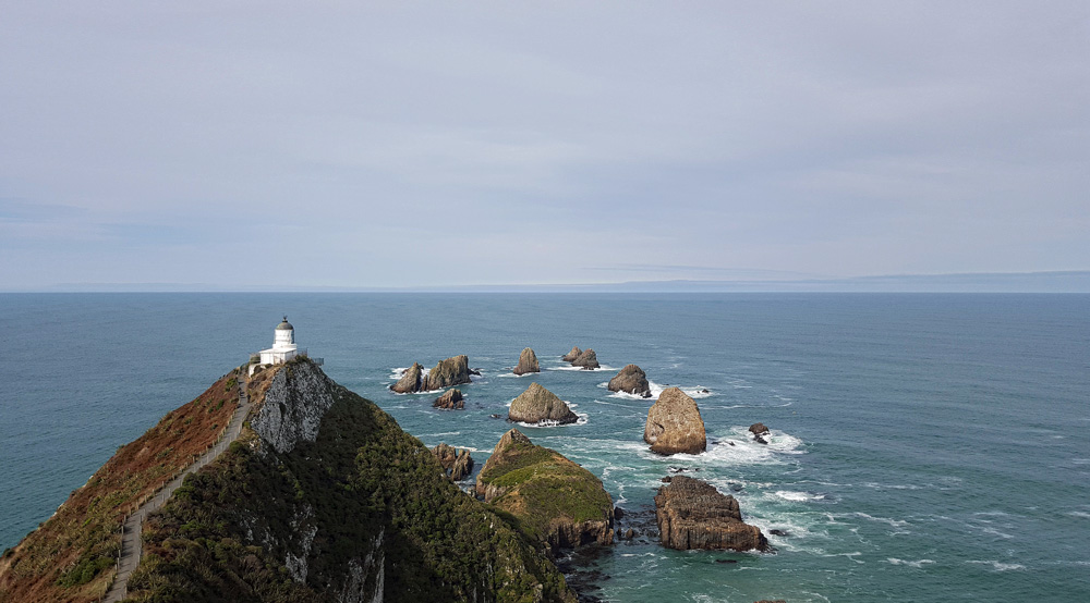 Nugget Point South Island New Zealand