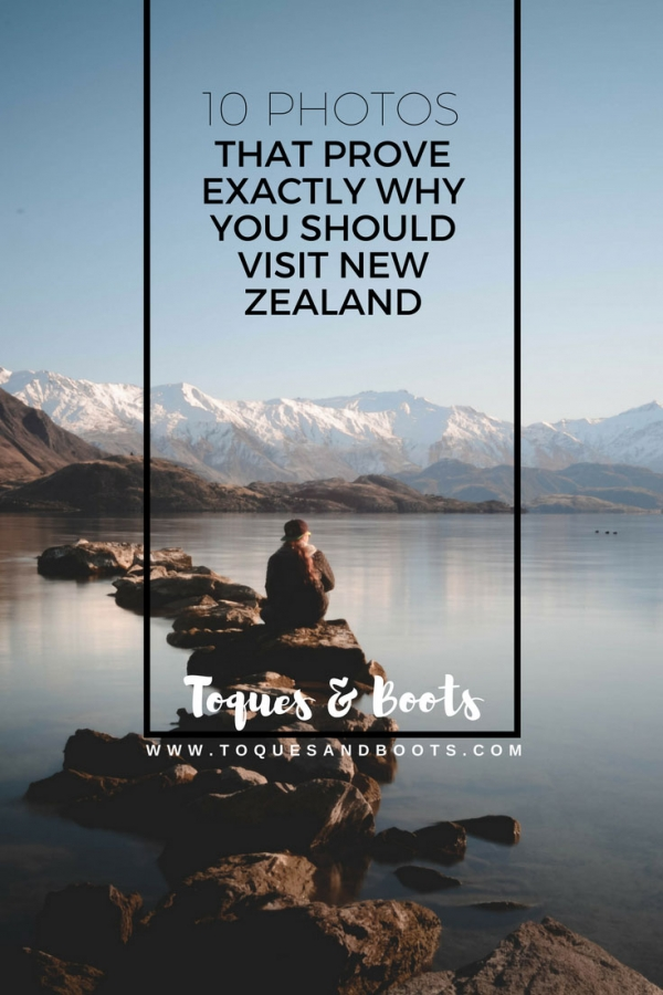 If you've ever thought about visiting New Zealand use these photos as a little bit of motivation. If they don't convince you to book the next flight to New Zealand then nothing will. Trust us....all of these sights are better in person!